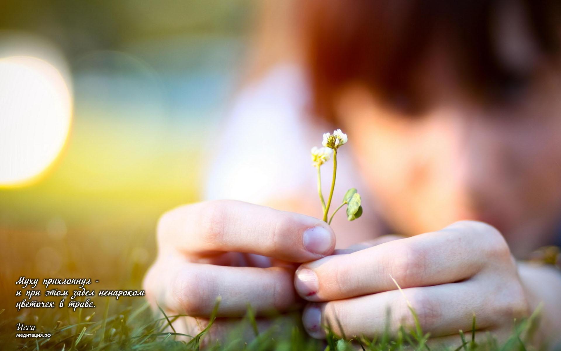 Рука, цветок скачать